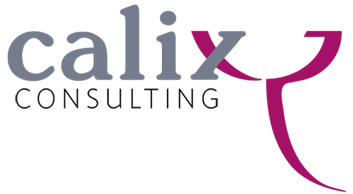 Anna Pehar | Calix Consulting | Executive Education Consulting